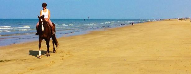 rider på den breda normandie stranden